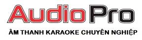 Công ty cung cấp thiết bị âm thanh loa karaoke chuyên nghiệp